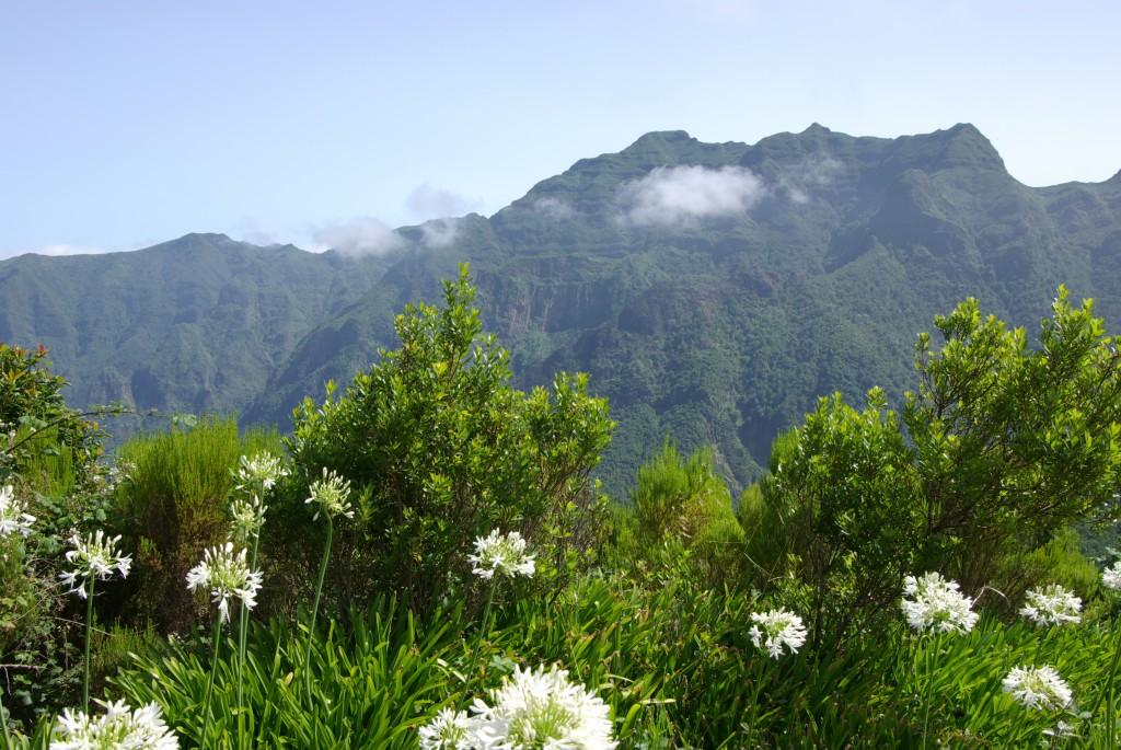 Madère, l'île volcanique, surnommée l'île aux fleurs